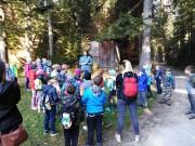 Wycieczka klas I do lasu